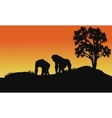 silhouette of gorilla in fields vector image vector image