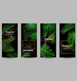 stylish wallpapers for smartphone with tropical vector image
