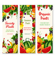 summer fruit and berry banner set for food design vector image