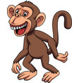 cartoon funny little monkey vector image vector image