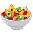 fresh fruit and berries salad vector image