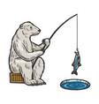 polar bear fishing color sketch engraving vector image vector image