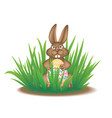 real easter bunny in the grass vector image vector image