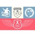set logo and badges baseball vector image