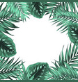 tropical jungle palm monstera green leaves frame vector image vector image