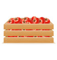 wooden box of tomato vector image vector image