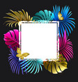 banner with colorful tropical plants and palm vector image