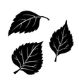 Birch Leaves Pictogram Set vector image vector image