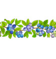 blueberry horizontal pattern on white background vector image vector image