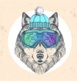 hipster animal wolf in winter hat vector image