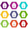 buttocks of girl icon set color hexahedron vector image vector image