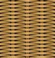 Cane flat woven fiber seamless pattern vector image