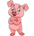 cartoon happy pig posing vector image vector image