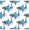 Fierce predatory swimming shark