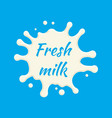 fresh milk label milk splash and blot vector image vector image