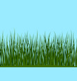 grass and blue sky seamless vector image vector image