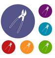 metal shears icons set vector image vector image