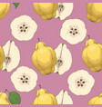 seamless pattern with ripe quince vector image vector image