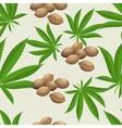 Seamless pattern with marijuana hemp leaves and vector image