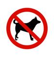 forbidding signs no dog or pets vector image