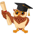 cartoon owl wearing graduation cap holding diploma vector image vector image