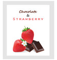 chocolate and strawberry vector image vector image