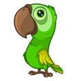 cute cartoon green parrot with a large beak vector image vector image