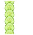 decorative border of cucumber slice vector image vector image