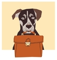 Friendly dog with business case vector image vector image