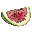 piece watermelon on white background vector image vector image