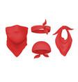 red bandana and buff realistic headband and scarf vector image