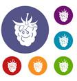 ripe fresh smiling raspberry icons set vector image vector image