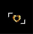 wedding photography logo vector image vector image