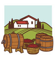 winery and vineyard wine barrels and grape vector image vector image