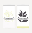 curry leaves in outline and silhouette style vector image