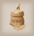 oatmeal flakes in the bag vector image