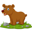 Cartoon happy babear in grass