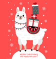 christmas card with llama and gifts vector image