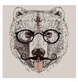 hipster portrait bear with glasses vector image