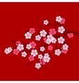 Sakura Branch on Red Background Oriental cherry vector image