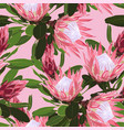 beautiful seamless pattern tropical protea flow vector image vector image
