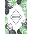 coconut with palm leaves design template hand vector image
