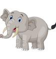 cute cartoon elephant on white background vector image vector image