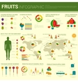 Fruits infographic design with different charts vector image vector image