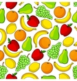 Tropical and garden fruits seamless pattern vector image