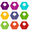 birch icon set color hexahedron vector image