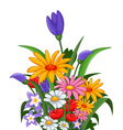 flowers for you design vector image vector image
