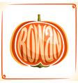 logo for rowan vector image