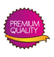 premium quality star isolated over white vector image