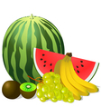 still life fruits banana watermelon grape kiwi vector image vector image